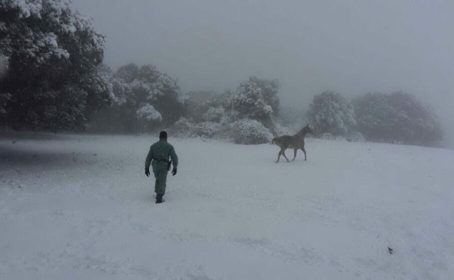 neve sui monti di santu lussurgiu