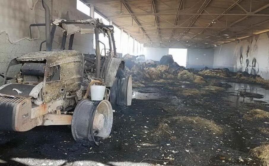 una delle aziende agricole devastate dalle fiamme