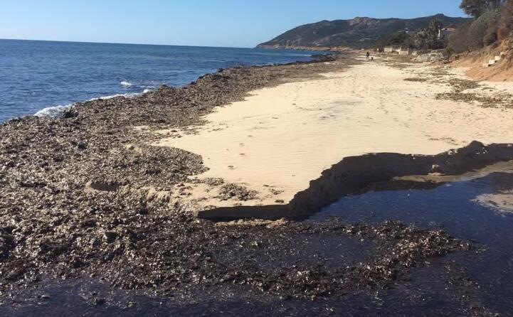 un altra immagine della spiaggia di santa margherita speditaci dalla nostra lettrice linda corrias (11 06 17)