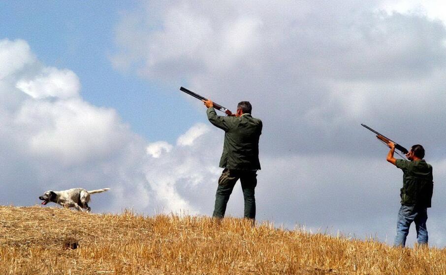 cacciatori