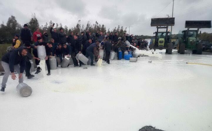 la protesta dei pastori a siamanna (foto elia sanna)