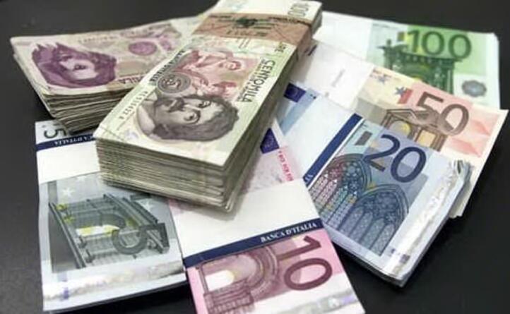 l euro invece subentra nel 2002