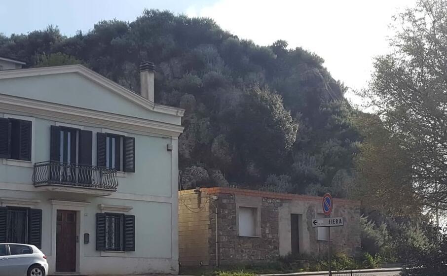 la collina all ingresso di macomer dove riprendono gli scavi (foto l unione sarda oggianu)