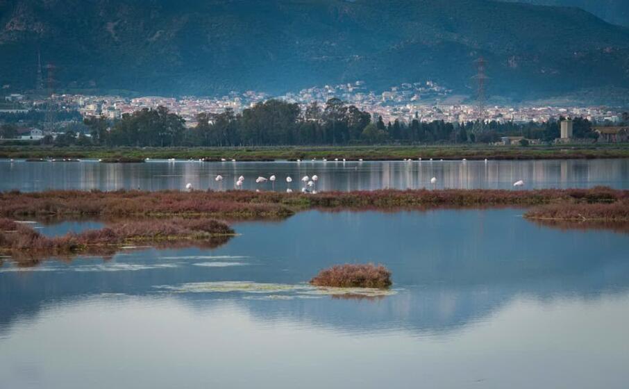 la laguna di capoterra (foto l unione sarda murgana)