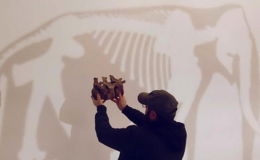 una ricostruzione del mammut (foto ufficio stampa)