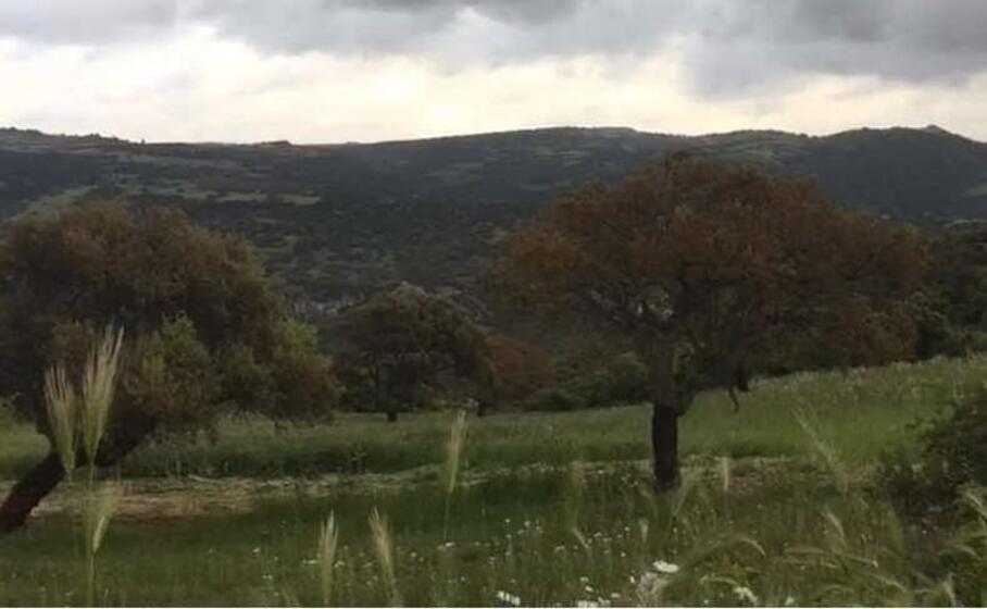 un area a 10 km dall abitato con campi e pascoli