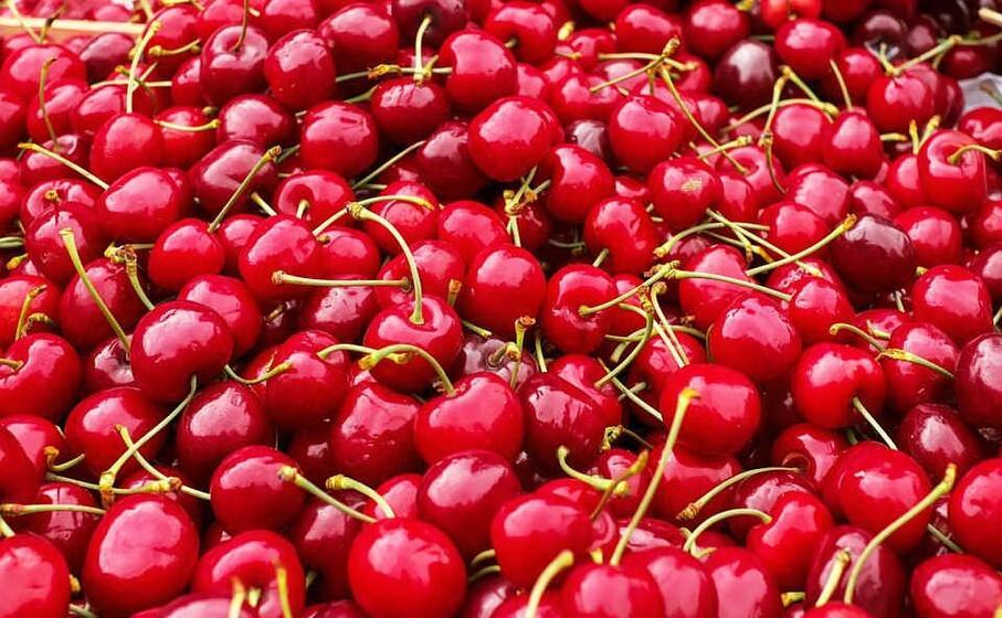 ciliegie (foto pixabay)