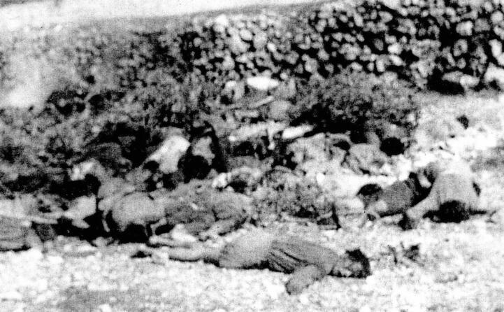 la strage di cefalonia esecuzione sommaria di soldati italiani ad opera dei tedeschi