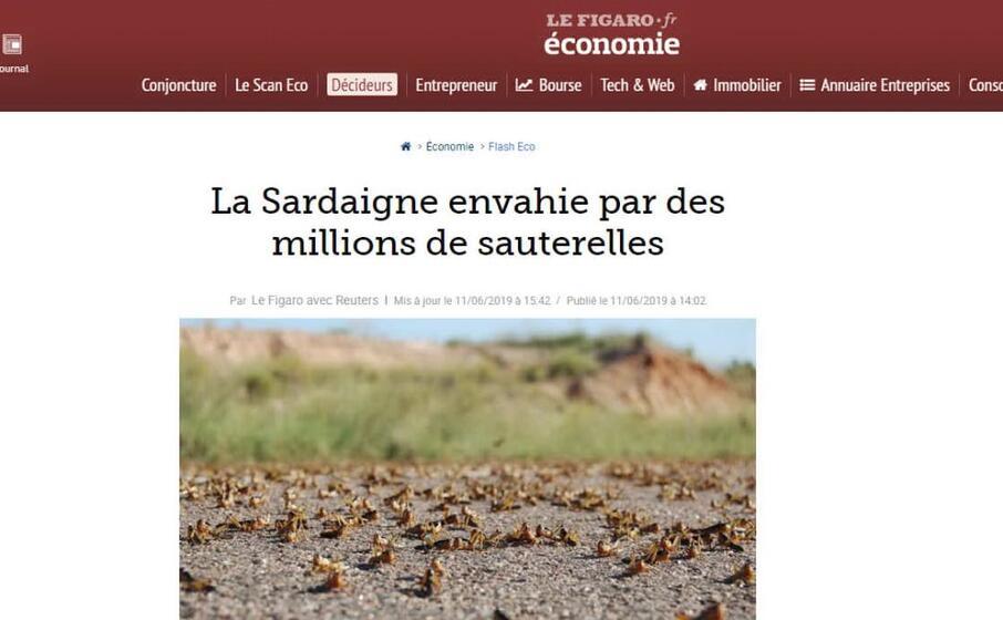 la sardegna invasa da milioni di cavallette scrive il francese le figaro