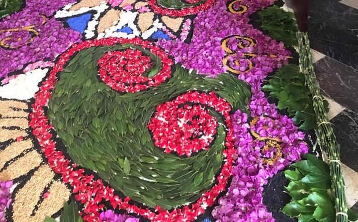 un vero e proprio tappeto colorato fatto di centinaia di disegni floreali