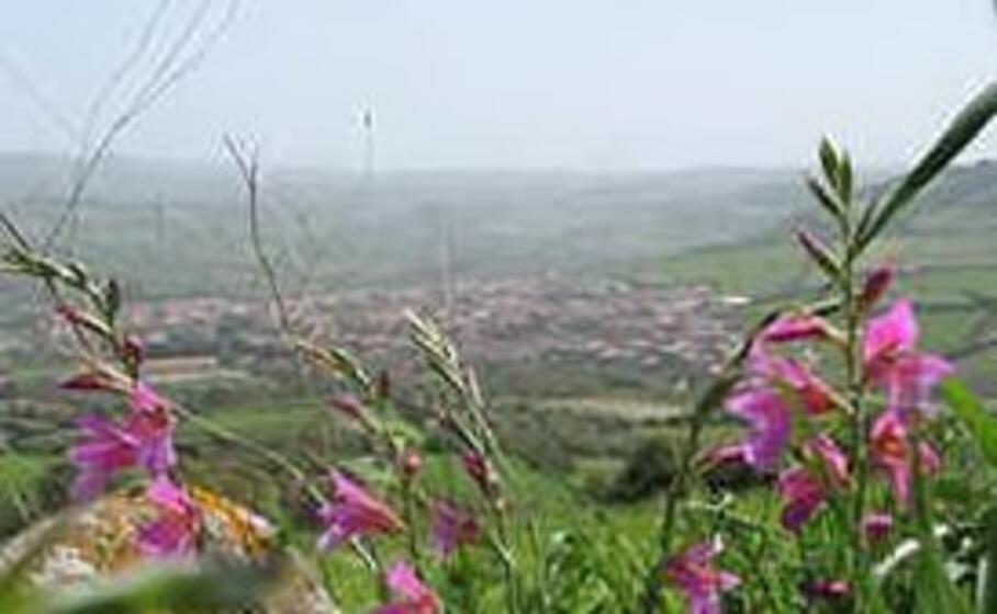 villaurbana (foto l unione sarda pala)