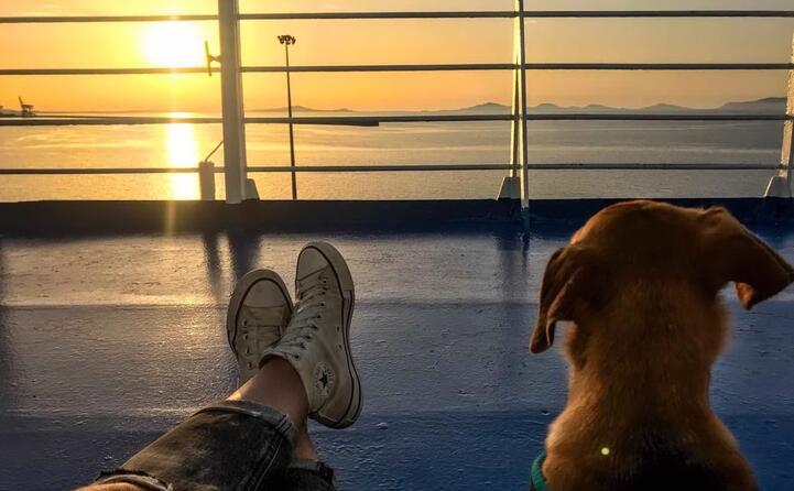massimiliano garau a bordo della tirrenia nuraghes in partenza da porto torres con connie che ammira il nostro splendido golfo dell asinara