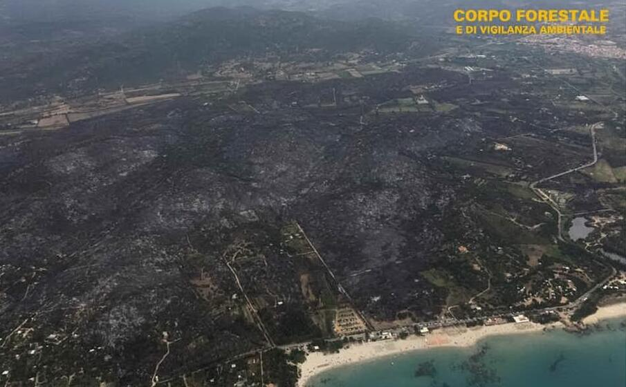 devastazione in ogliastra dopo i roghi di questi giorni (foto corpo forestale)