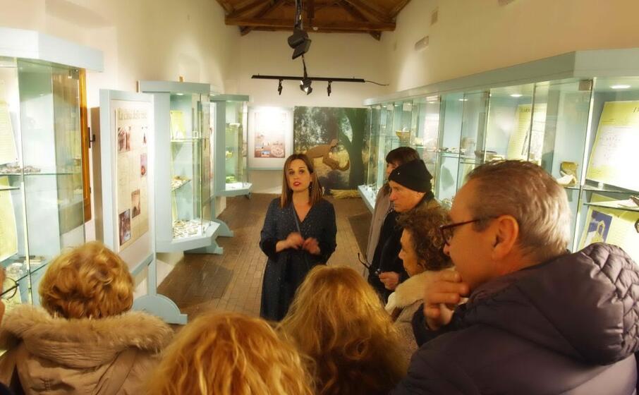 visita guidata al museo di senorb (foto severino sirigu)