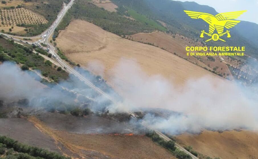l incendio lungo la 195 (foto corpo forestale)