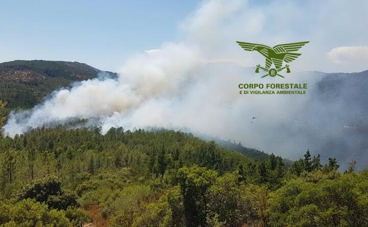 per domare le fiamme sono stati necessari due elicotteri leggeri e uno pesante