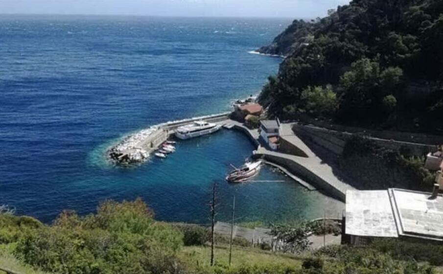 l isola di gorgona (foto google maps)