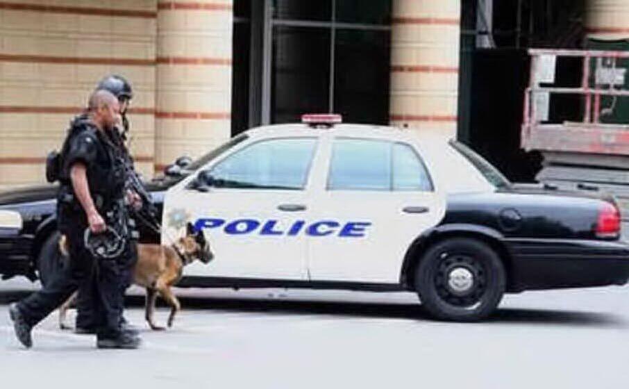 l intervento della polizia (ansa)