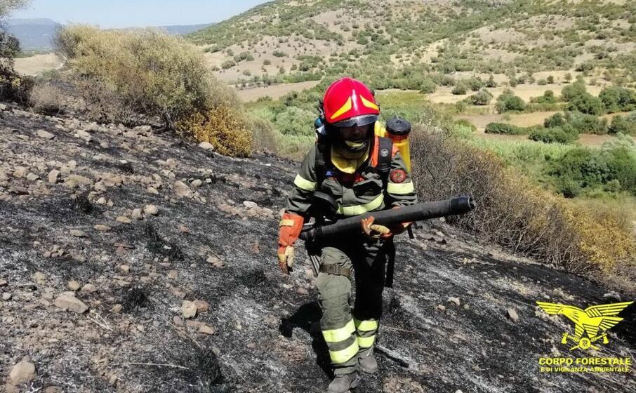 le operazioni di spegnimento del fuoco (foto corpo forestale)