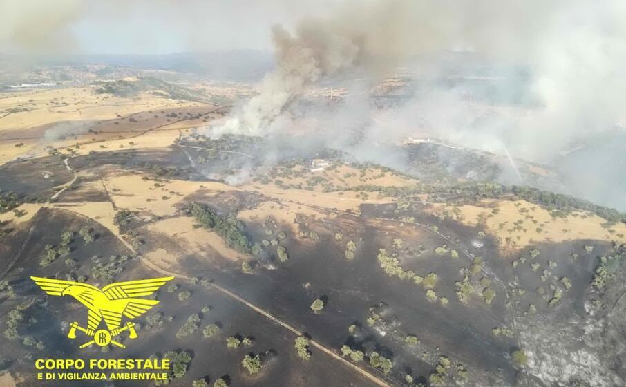 l incendio di bitti (foto corpo forestale)