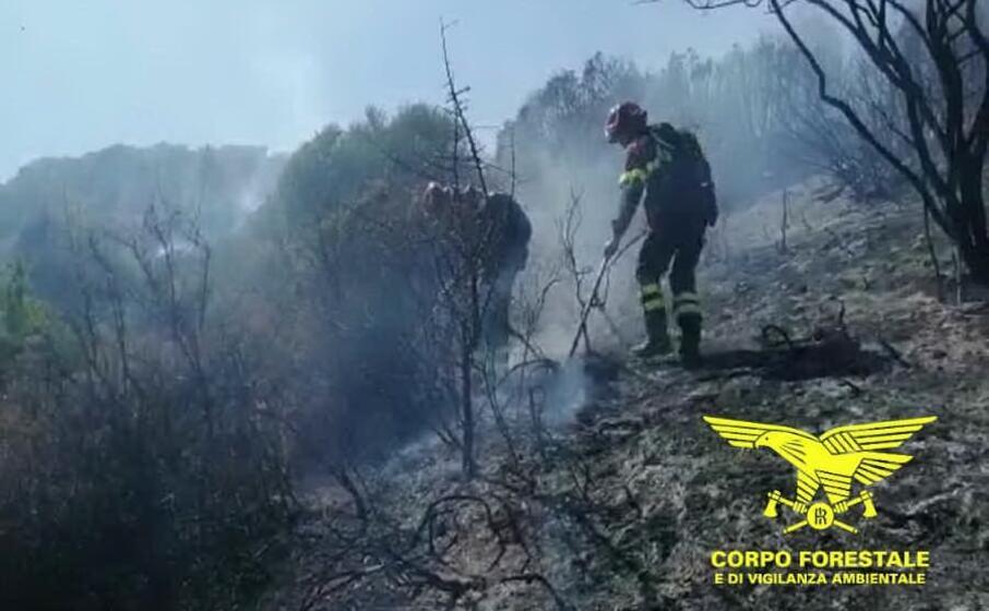 l estinzione di un incendio (foto corpo forestale)
