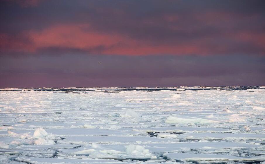 ghiacciai in groenlandia (ansa)