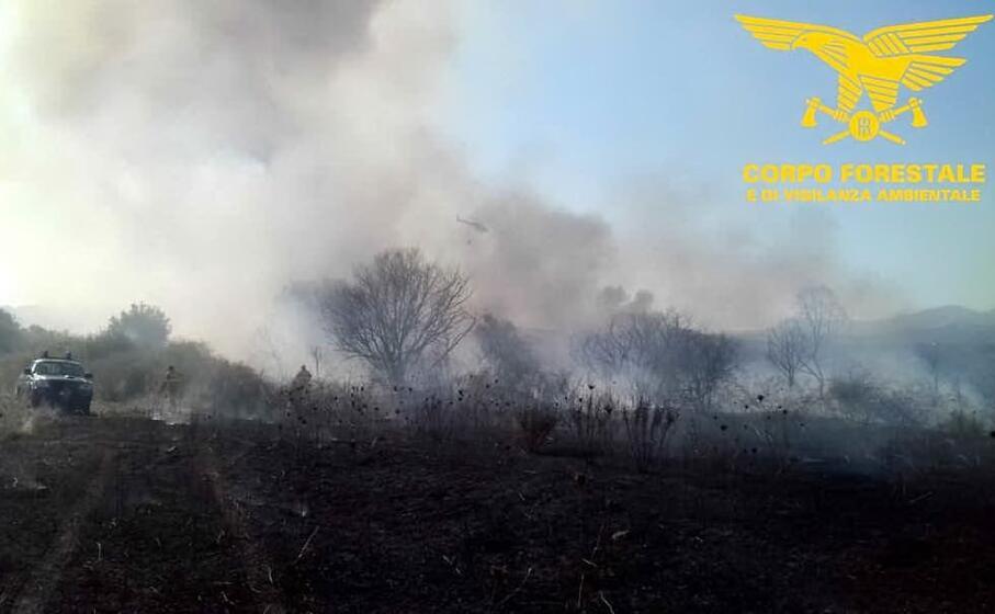 lo scenario dopo uno degli incendi domati oggi (corpo forestale)