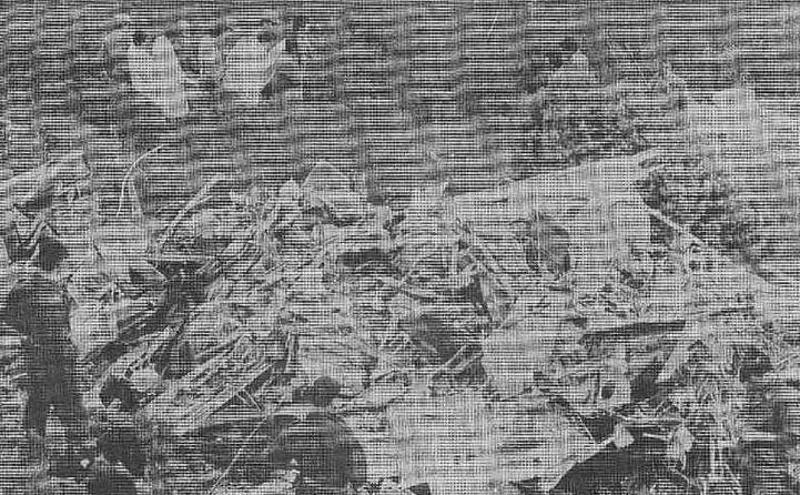 i resti dell aereo