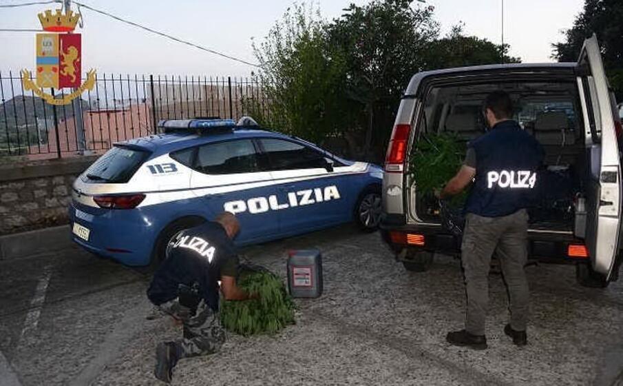 gli agenti con alcune piante sequestrate (foto polizia)