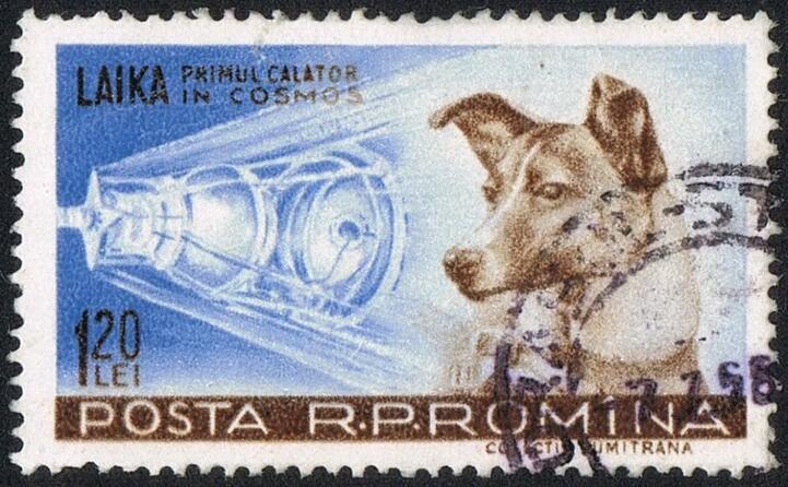 un francobollo dedicato a laika (foto wikipedia)