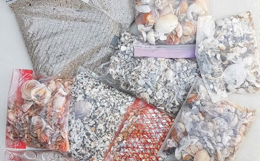 parte del materiale restituito (foto sardegna rubata e depredata)