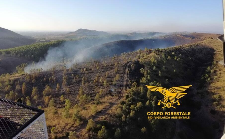 l incendio a monastir (foto corpo forestale)