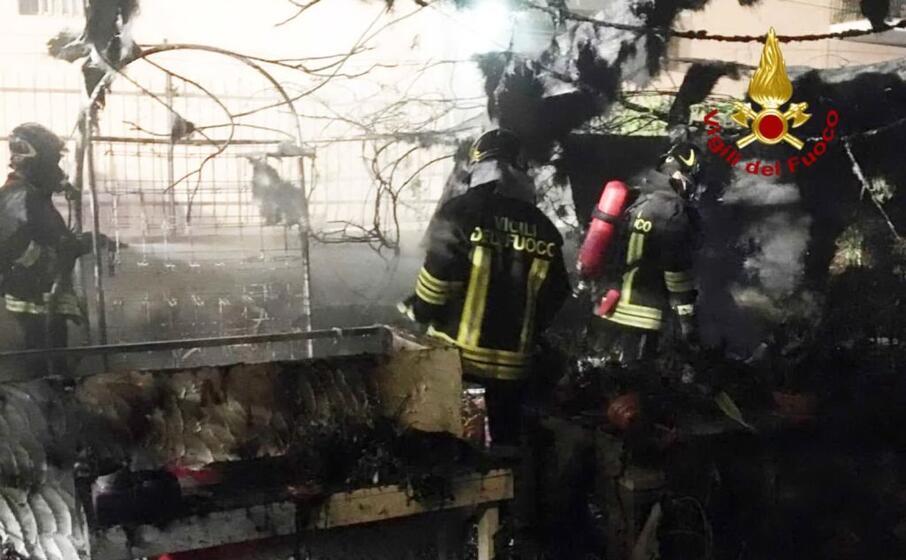 i vigili del fuoco sul posto (foto vvf)