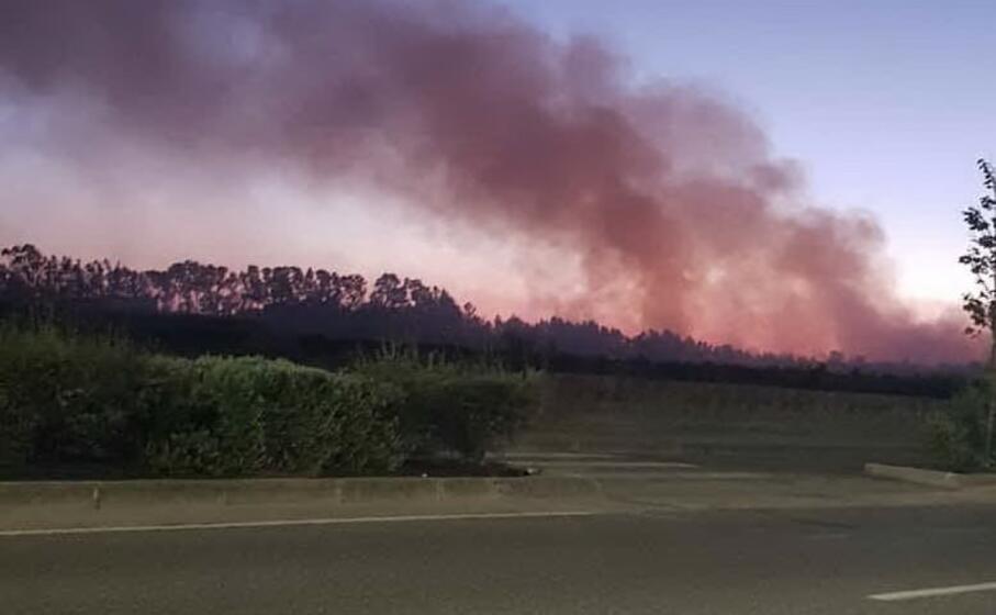 uno degli incendi nella zona di pesaria (foto l unione sarda sanna)