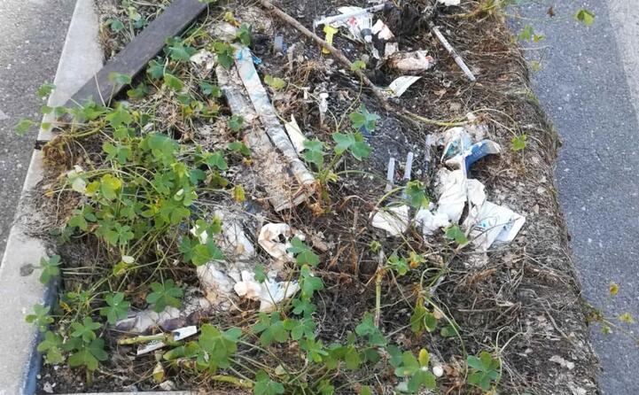 via falletti a cagliari questa una vaschetta per i fiori sono presenti sirighe e rifiuti una situazione indecente la foto inviata da un lettore (20 04 2019)