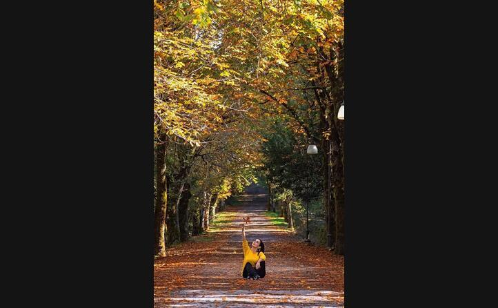 l autunno immortalato nei viali alberati di badde saliches a bolotana (foto roundok_)
