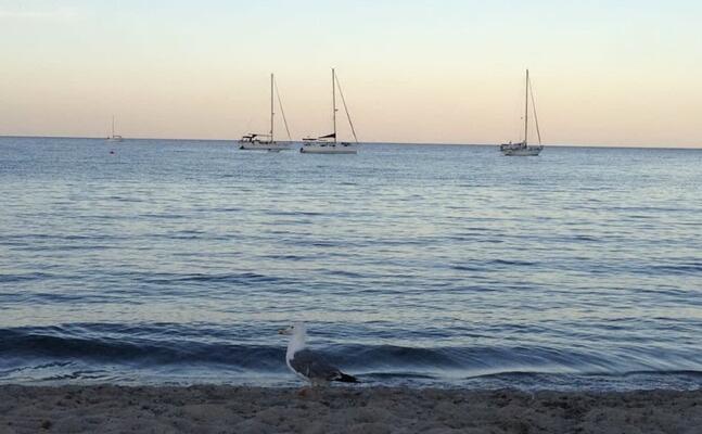 la spiaggia di nora al tramonto (foto murgana)