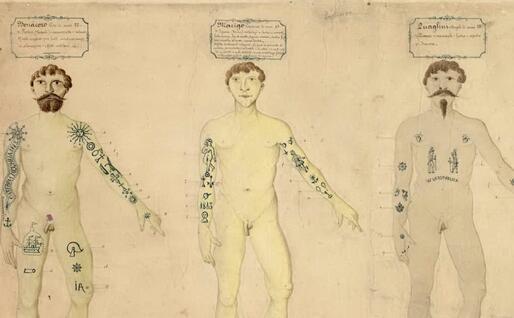 """Un'immagine dal volume del 1876 """"L'uomo delinquente"""""""