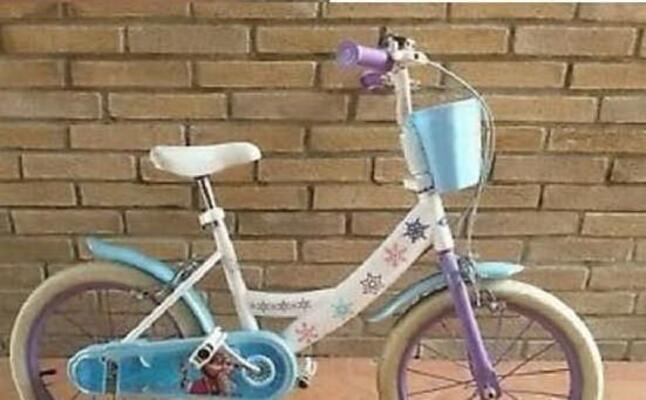la bici rubata (foto l ena)