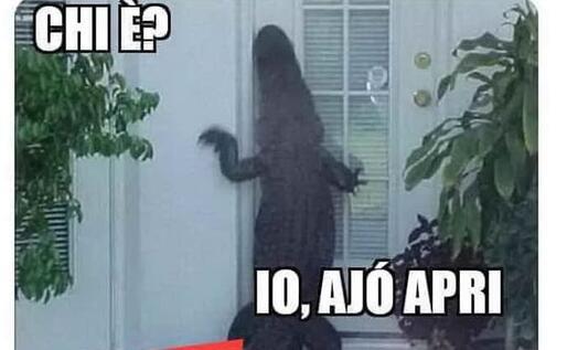 Un'altra divertente immagine dal web (foto da Google)