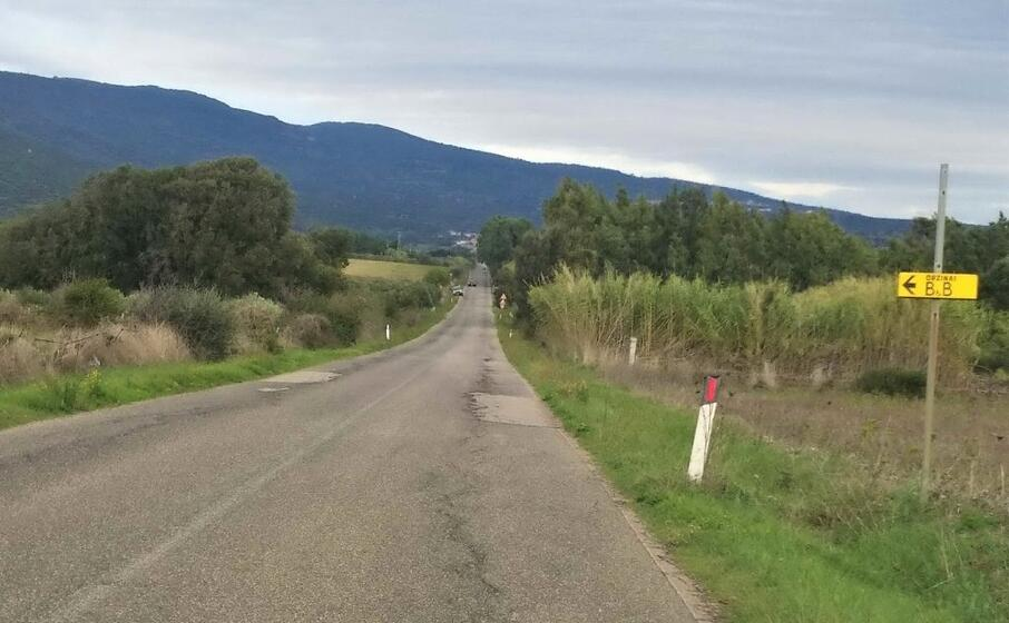 un tratto della strada provinciale 11 (foto l unione sarda a cortese)