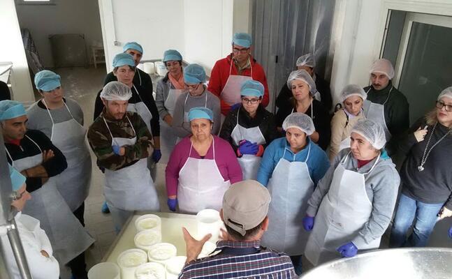 l azienda zootecnica cuscusa di gonnostramatza (foto antonio pintori)