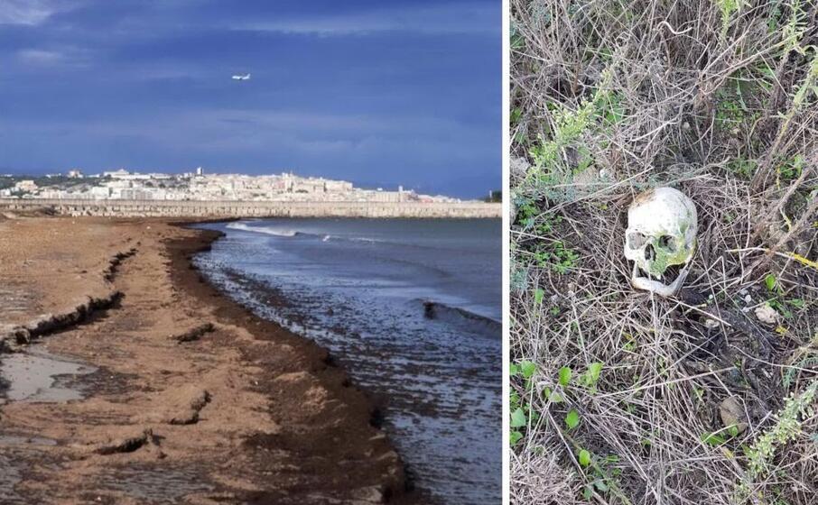 la spiaggia di giorgino e il teschio