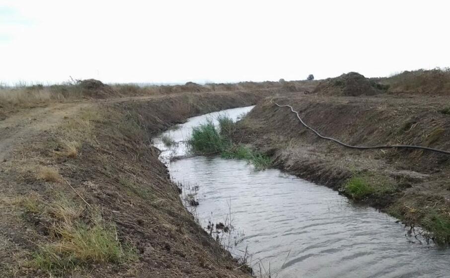 un canale del consorzio di bonifica nell oristanese (l unione sarda foto sanna)
