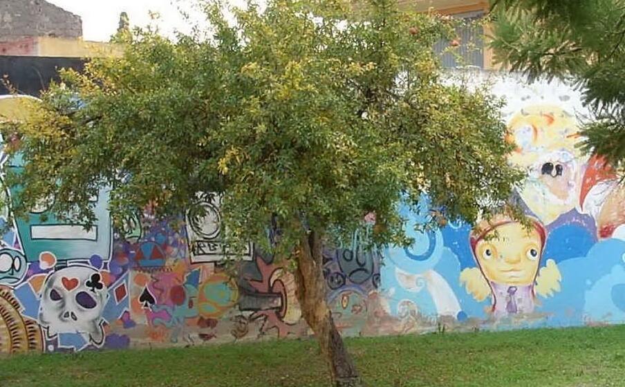 il giardino della biblioteca (l unione sarda foto sirigu)