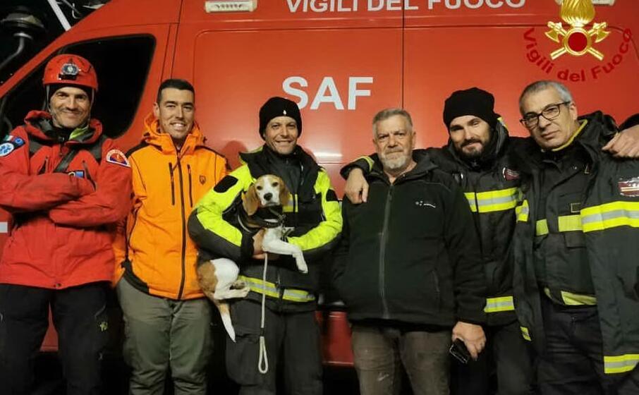 il cane con i soccorritori (foto vigili del fuoco)