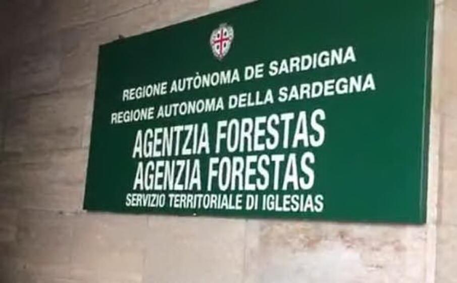la sede di forestas (l unione sarda foto simbula)