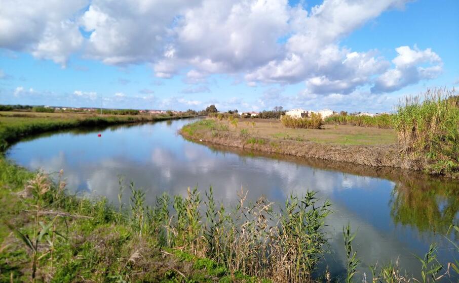 il rio mogoro