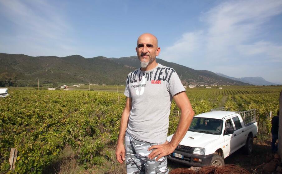 il sindaco marco melis di fronte alle vigne di quirra (foto simone loi)