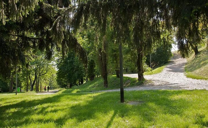 a lui sono dedicati un albero e un cippo nel giardino dei giusti di tutto il mondo di milano (le foto sono wikipedia)